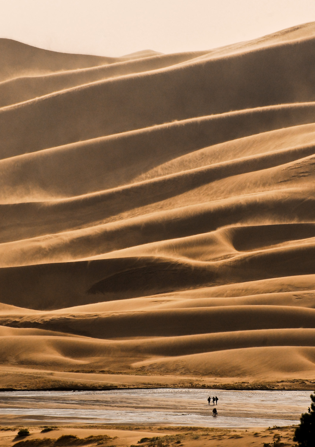 High winds at sunset at the Great Sanddunes National Park Colorado