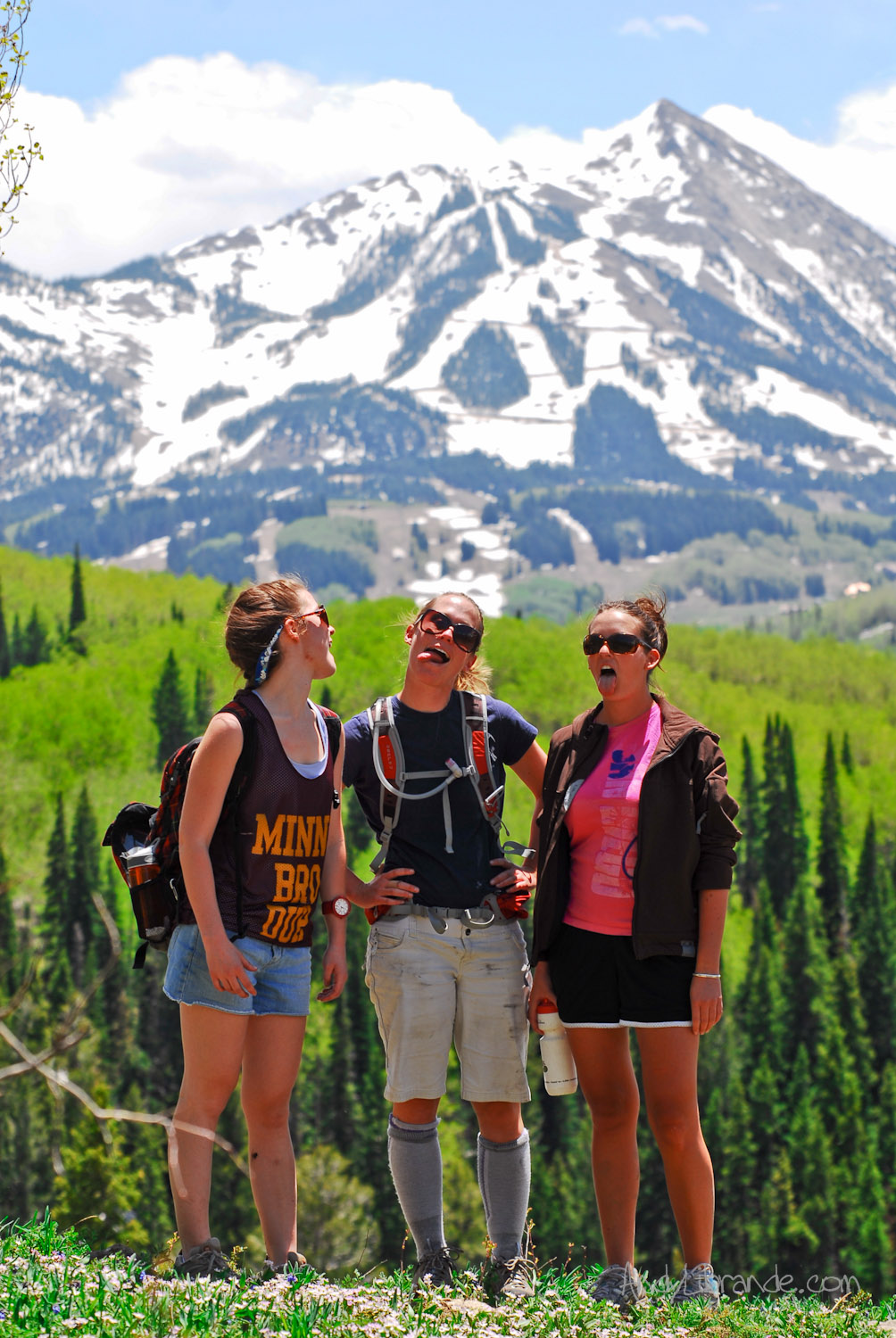 Judd Falls overlook of Mt Crested Butte