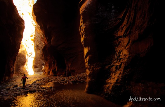 Golden Reflections in Zion Narrows March 2012