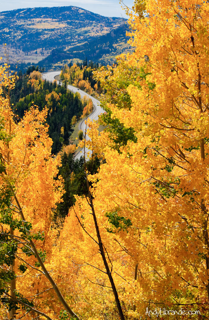 Wolf Creek Pass Fall Colors Oct 6th 2013
