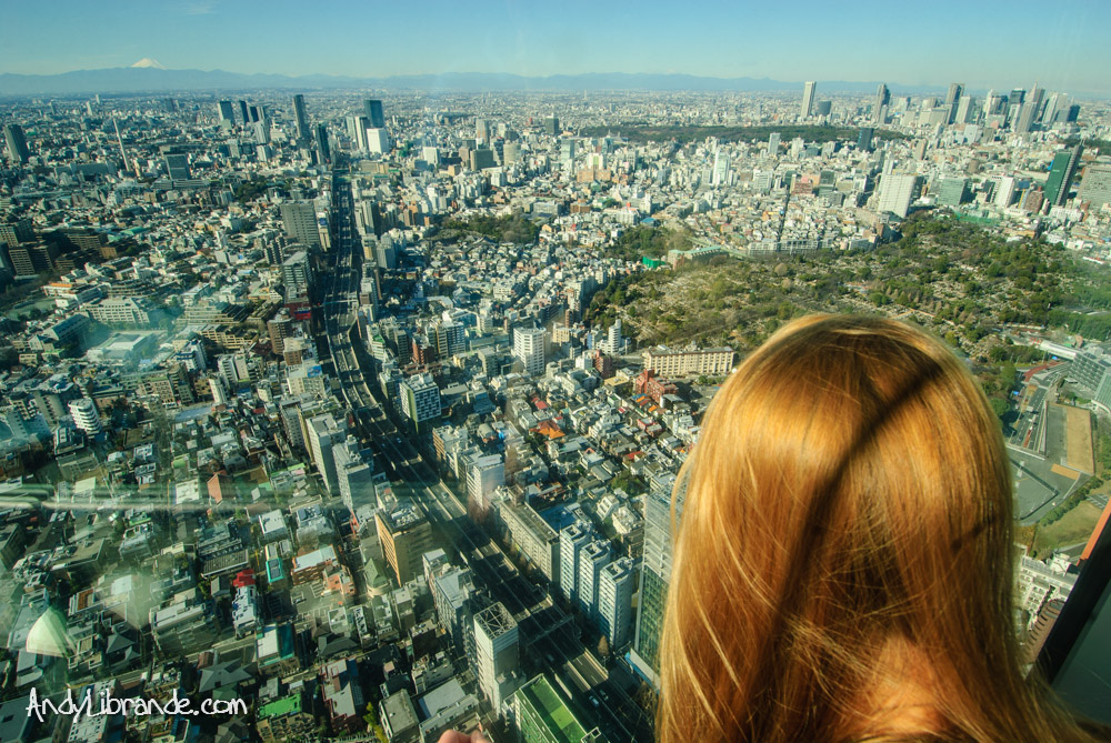 View from Mori Tower Roppongi Hills
