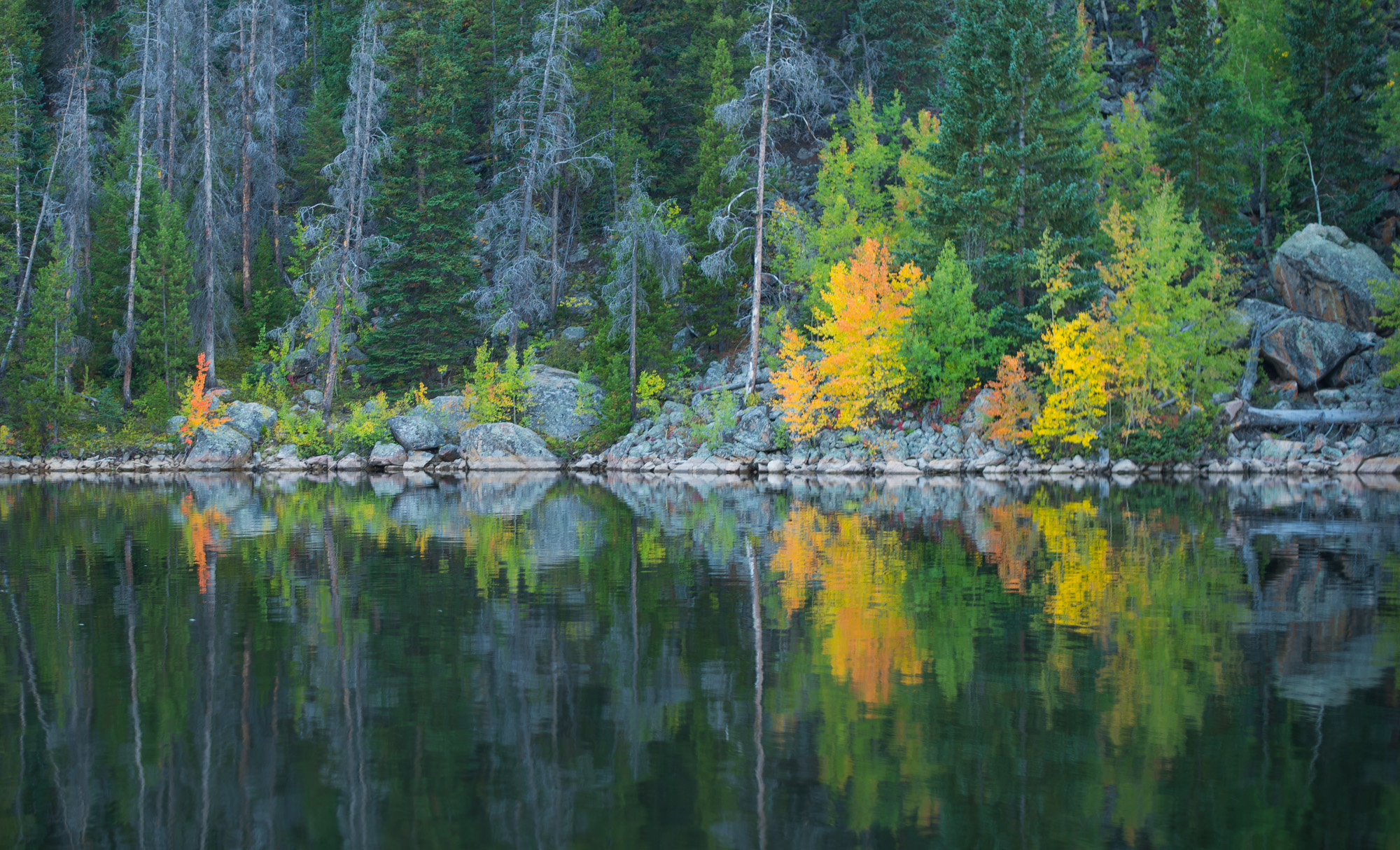 Fall Colors at Lake Granby