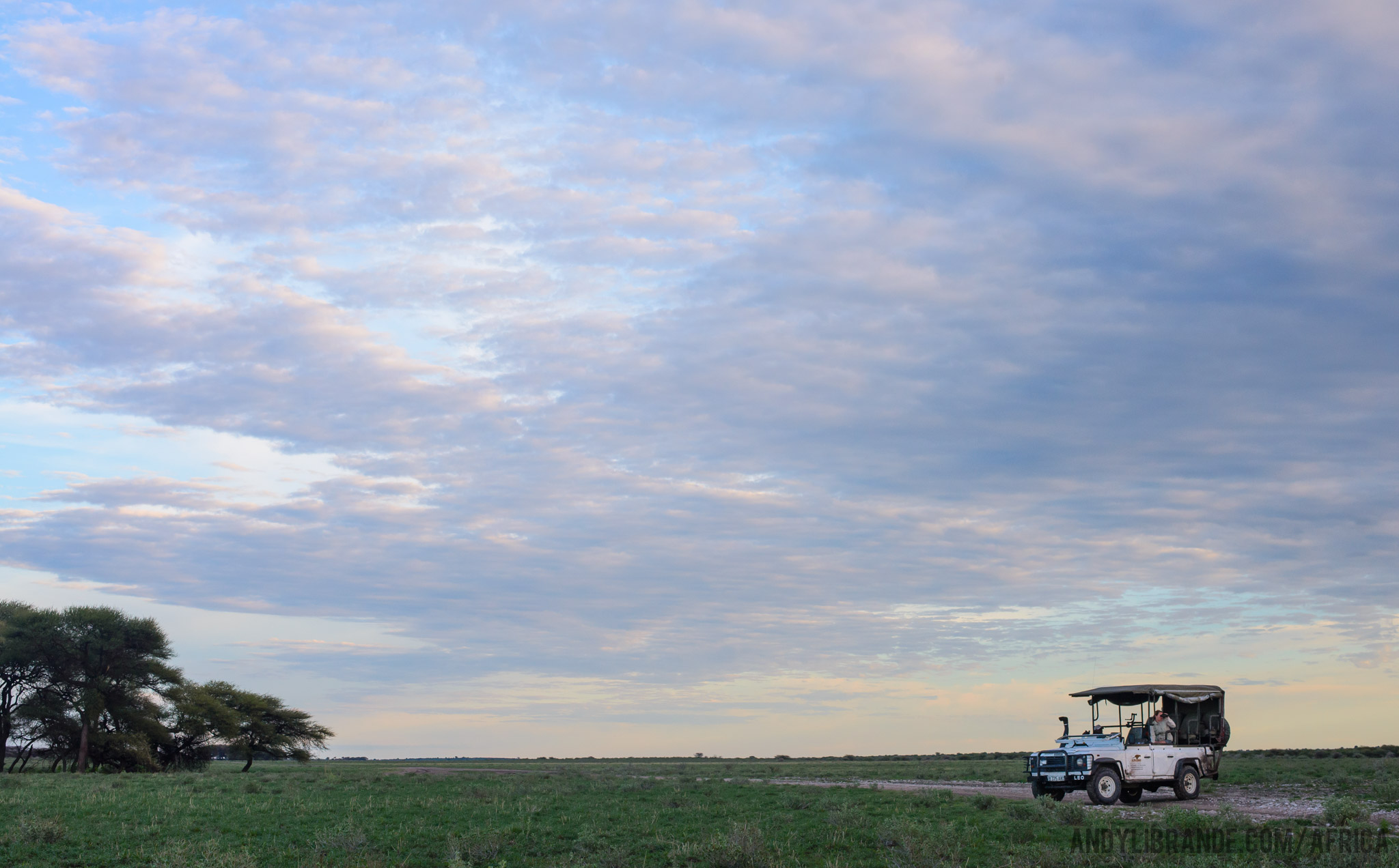 Central Kalahari Game Reserve with Unlimited Safaris
